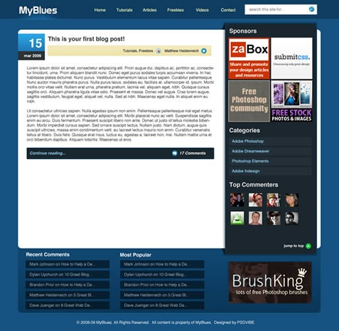 wordpress_blog_design14