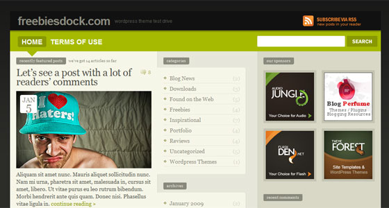 Descarga libre: 40 Themes Premium de Wordpress - elWebmaster.com