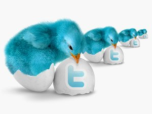 Blue_Bird_Twitter_Icon_Pack
