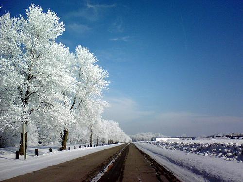 Air Hoar Frost, Hammer51012 (Flickr)