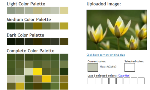 25 Color Bination Tools For Designers Awesome Hunter Green Schemes